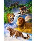 Пазл - Великі кішки (Castorland) 1000 ел.