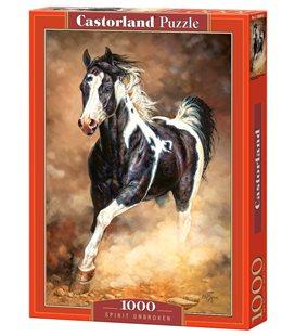 Пазл - Непрерывный дух (Castorland) 1000 эл.