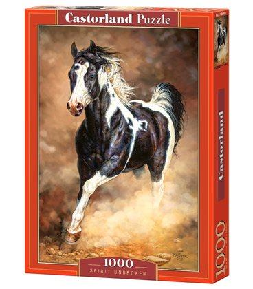 Пазл - Безперервний дух (Castorland) 1000 ел.
