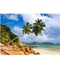 Пазл - Тайський пляж, Сейшельські острови (Castorland) 1000 eл.
