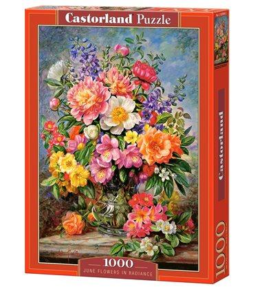 Пазл - Червень Квіти в сяйві (Castorland) 1000 eл.