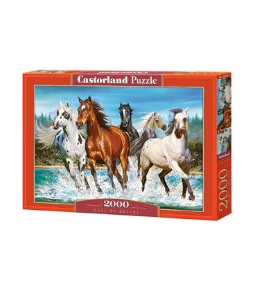 Пазл - Призыв природы (Castorland) 2000 эл.