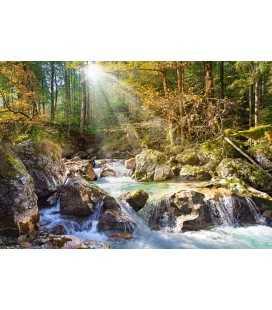 Пазл - Лесной ручей (Castorland) 2000 эл.