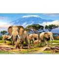 Пазл - Ранок в Кіліманджаро (Castorland) 1000 ел.
