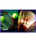 Теннис и бадминтон